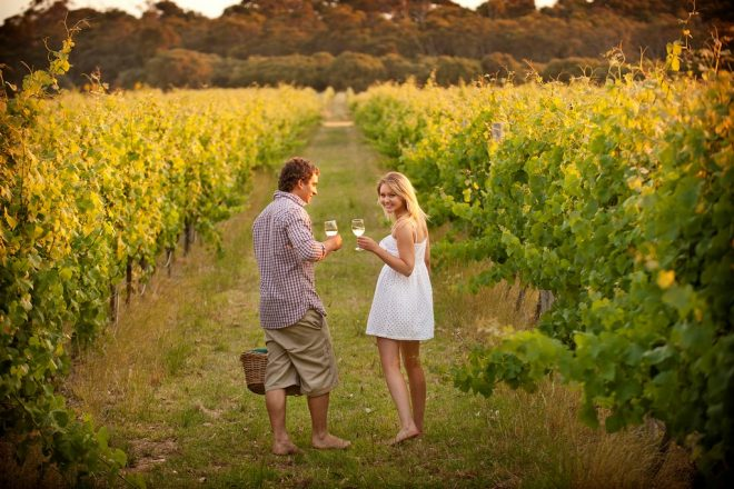 Top 10 winery experiences in the Margaret River region