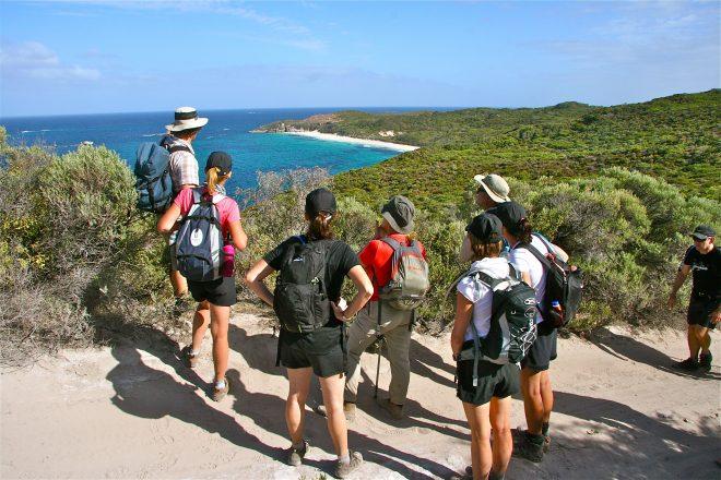 Meet the maker: Gene Hardy of Cape to Cape Explorer Tours